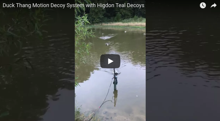 Duck Thang Motion Decoy System with Higdon Teal Decoys
